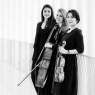 Trio Yano Schwall Kravos